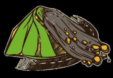 Landslide Rubble Falling  - gtaranu / Pixabay